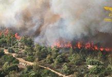 incendi sardegna agosto 2019