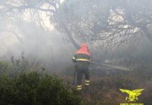 incendio alghero bosa sardegna