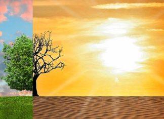 cambiamenti climatici coldiretti sardegna