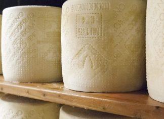 formaggio sardegna