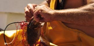 pescatori asinara sassari sardegna