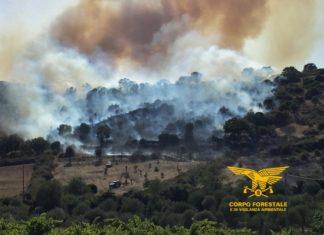 incendi sardegna 2020